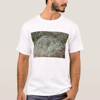 Williamsii van Lophophora - Peyote T Shirt