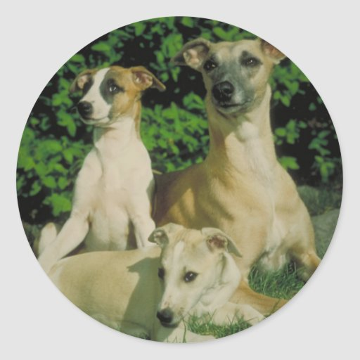 Windhond en Puppy Ronde Sticker