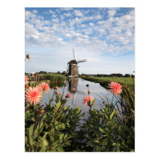 Windmill and flowers in Holland postcard Briefkaart