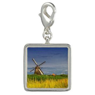 Windmolens in Kinderdijk, Holland, Nederland Charms
