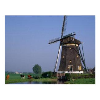 Windmolens, Leidschendam, Nederland Wens Kaarten