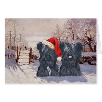 Wintertijd Skye Terriers Kaart