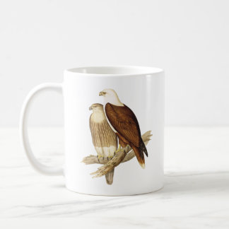 Wit Breasted Zee Eagle. Grote Roofvogel Koffiemok