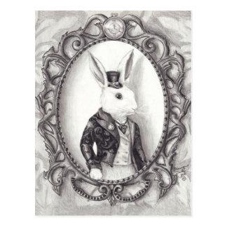 Wit Konijn - Briefkaart