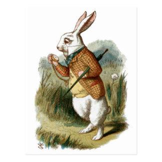 Wit Konijn van Alice in Sprookjesland Briefkaart