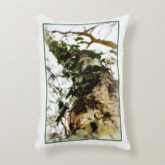 wit Natuurlijk kussen schuimt het bos boom klimop