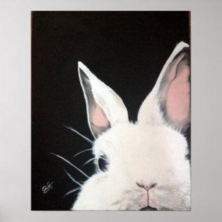 Wit Rabbit.jpg Poster
