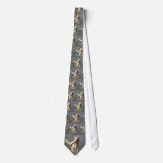 Wit stropdas 4 van Duitse herders