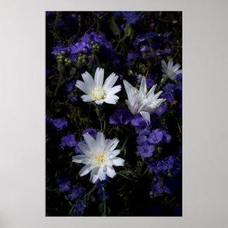 Witlof en Phacelia Wildflowers Poster