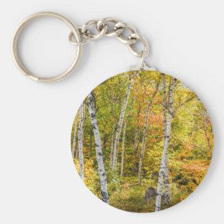 Witte Berken in de Knoop Keychain van de Herfst Sleutelhanger
