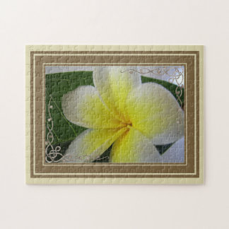 Witte en Gele Bloem Frangipani Puzzel