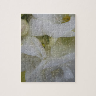 Witte fresia puzzel