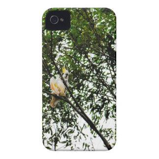 WITTE KAKETOE QUEENSLAND AUSTRALIË iPhone 4 HOESJE