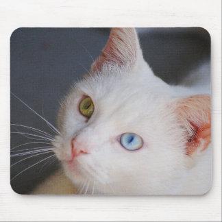 Witte kat met één groen oog & één blauw oog muismat