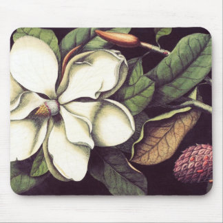 Witte Magnolia Mousepad, Koel Muismat