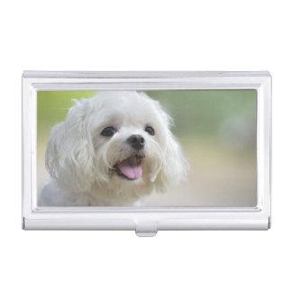 Witte Maltese Hond Visitekaarthouder