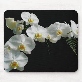 Witte Orchidee Mousepad Muismatten