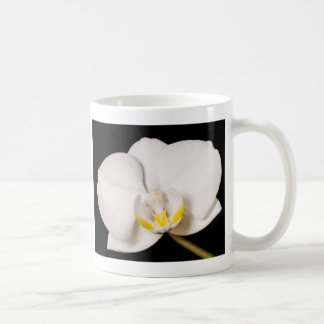 Witte Orchidee op Zwarte Koffiemok