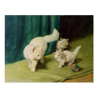 Witte Perzische kat met Twee Katjes Briefkaart