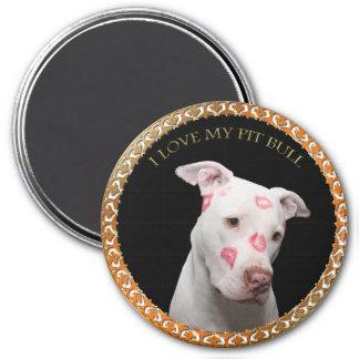 Witte pitbull met rode kussen helemaal over zijn magneet