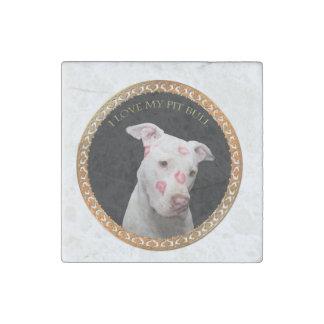 Witte pitbull met rode kussen helemaal over zijn stenen magneet