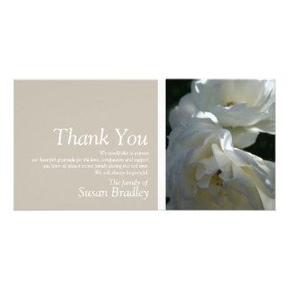 Witte Rozen 3 Sympathie danken u de Zegel van de Kaart