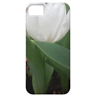 Witte Tulp Barely There iPhone 5 Hoesje