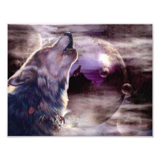 Wolf die bij de Maan huilen Fotoprints