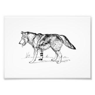 Wolf Foto Print