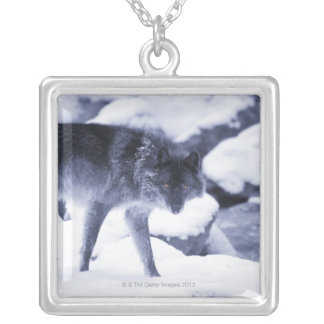 Wolf Hangertjes