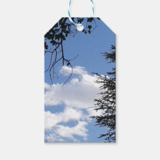 Wolk en Bomen Cadeaulabel