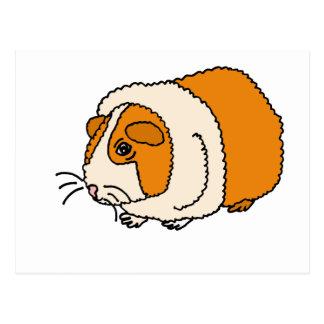 XX de leuke Cartoon van het Proefkonijn Briefkaart