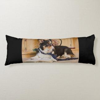 Yogi de Hond van de Wetenschap Lichaamskussen