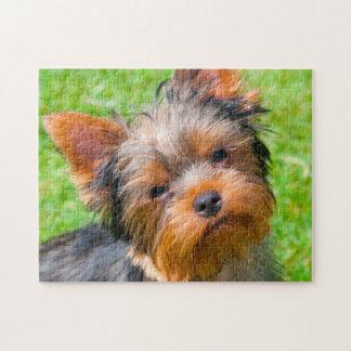Yorkshire Terrier dat omhoog eruit ziet Puzzel
