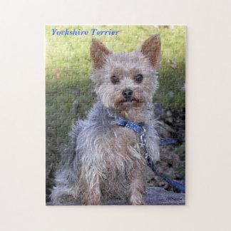 Yorkshire Terrier Puzzel