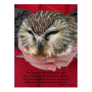Zaag Wet Het Briefkaart Van Het Gedicht Van De Uil