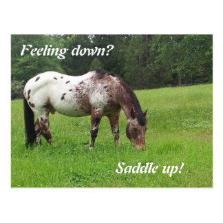 Zadel op het Briefkaart van het Paard