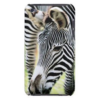 Zebra, close-up, selectieve nadruk iPod touch hoesje