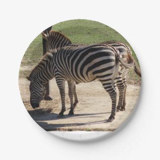 Zebras bij de Dierentuin Papieren Bordje