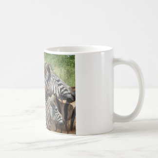 Zebras Zuid-Afrika Koffiemok