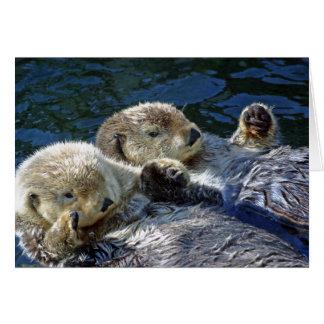 Zee-otters kaart