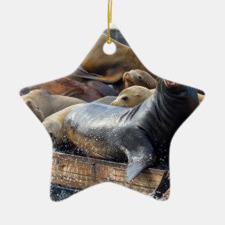Zeeleeuwen op het Drijvende Dok in San Francisco Keramisch Ster Ornament