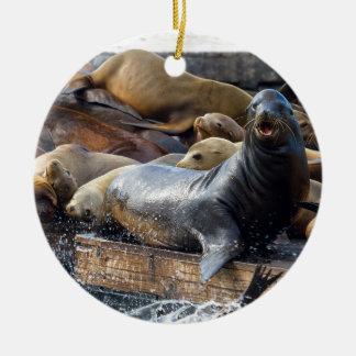 Zeeleeuwen op het Drijvende Dok in San Francisco Rond Keramisch Ornament