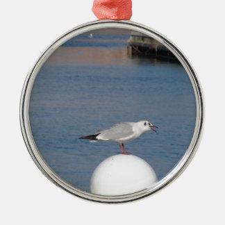 Zeemeeuw met zwarte kop die bij het post roepen zilverkleurig rond ornament