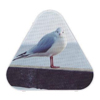 zeemeeuw bluetooth speaker