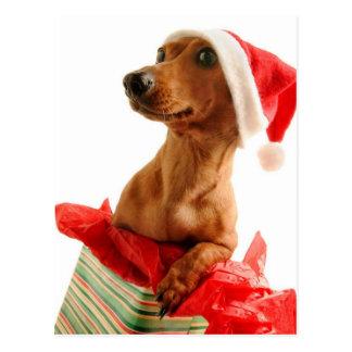 Zeer Kerstmis Doxie Briefkaart