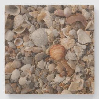 Zeeschelpen bij de Kust van het Zee Stenen Onderzetter