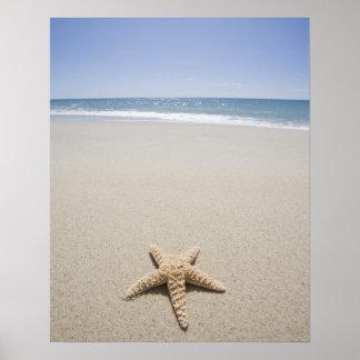 Zeester op strand door de Atlantische Oceaan Poster