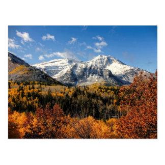 Zet Timpanogos in de Bergen van Utah van de Herfst Briefkaart