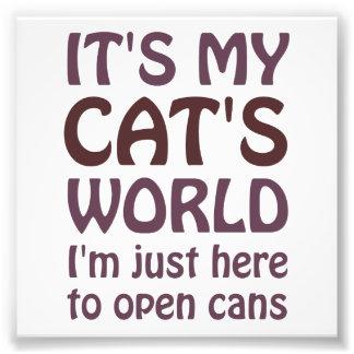 Zijn Mijn Wereld van Katten - de Open enkel Foto Afdruk